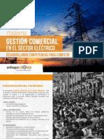 Programa - Gestión Comercial Para El Sector Eléctrico - Enfoque Cliente