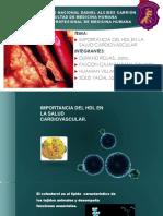 Importancia Del HDL en La Salud Cardiovascular