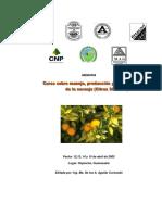 curso-naranja.pdf