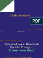 t9 Derecho Ecologico - Derecho Petrolero 2013