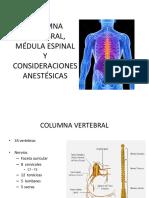 Anestesia en columna