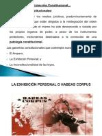 Presentación El Amparo y La Exhibición Personal
