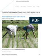 9 Steps to Start Rice Farming & Production in Nigeria