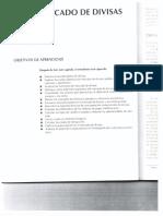 82623062-Mercado-de-divisas.pdf