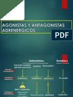 Agonistas y Antagonistas adrenergicos
