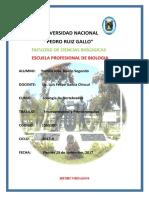 465-2017 HEMICORDADOS