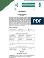 Herbs - Hawthorne (Crataegus Oxyacantha)