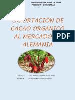 Proyecto de Exportación de Cacao