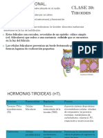03. ENDOCRINOFISIOLOGÍA Tiroides y paratiroides.pdf