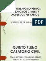 Quinto Pleno Casatorio Civil