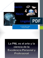 Programacic3b3n Neurolingc3bcc3adstica Asociacic3b3n Alzheimer