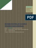 Busbar Testing (1)