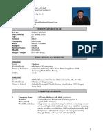 resumesilterra.pdf