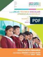 GUIA Primaria3y4sesion_CTE.pdf