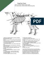 Cerraduras energéticas en animales.pdf
