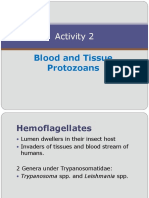 Activity 2 Blood and Tissue Protozoans(2)