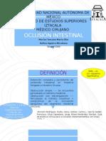 1oclusión Intestinal