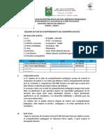 Plan de Acompañamiento Del Desempeño Docente-03-Febr