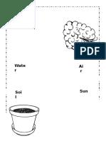 What Plants Need Worksheet