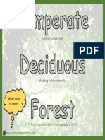 Geography Display TDF