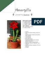 Amaryllis English