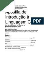 Aprenda Java em c em c.docx