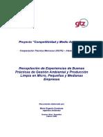Buenas practicas Produccion mas limpia.pdf