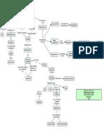 Mapa de la Lectura 4-  Respiración Celular