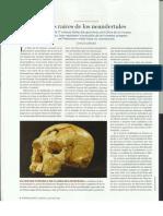 Los Neandertales 1