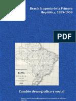 Agonia de La Primera Republia de Brasil
