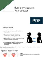 Introduccion y Aparato Reproductor