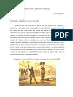 2 Tema - A Escravidão Africana No Brasil P