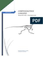 [Síntesis] Compsognathus Longipes - Registro fósil y paleontología