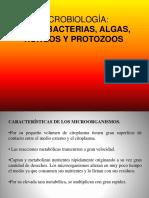 16. Microbiología