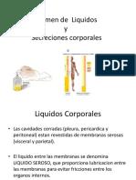 Examen de Liquidos Corporales