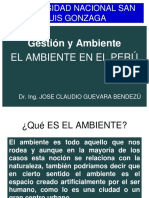02-AMBIENTE PERUANO.ppt