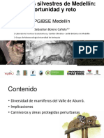 Mamíferos silvestres de Medellín