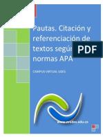 Instructivo-pautasnormasapa2012cvudes.pdf