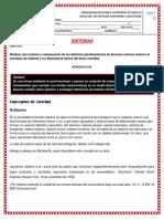 Concepto sobre sistema 1.docx