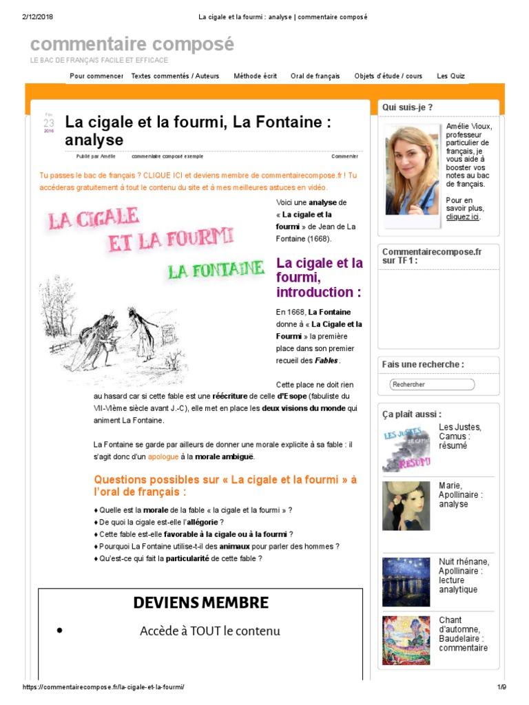 Exemple De Commentaire Rédigé Bac Français - Le Meilleur ...