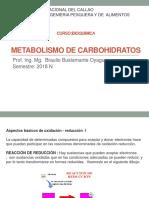 Clase Metabolismo de Carbohidratos 2018N