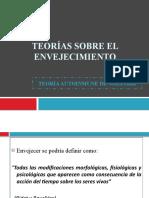 TEORÍAS SOBRE EL ENVEJECIMIENTO (autoinmune)