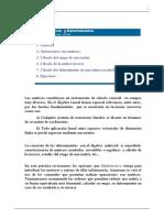 Practica de Matrices y Determinantes