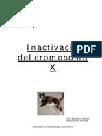 cromosomaX