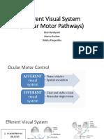 Efferent Visual System (Ocular Motor Pathways)