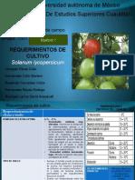 Requerimientos-del-cultivo (1).pptx