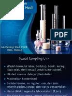 Urine Panum 2012