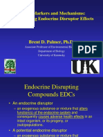 Understanding Endocrines Disruption