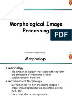 morphology.ppt