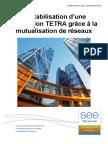 Livre Blanc Rentabilisation d Une Installation TETRA Grace à La Mutualisation de Reseaux SEE Telecom